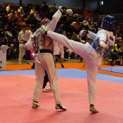 2017-usmg-taekwondo-brandon-5