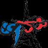 Logo idf tkd